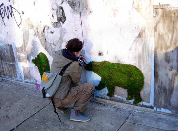 moos graffiti bilder bär graffiti erstellen graffiti künstlerin
