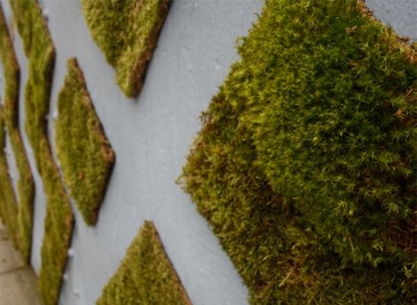 graffitibilder graffiti erstellen wanddeko ideen zaun graffiti künstlerin anna garforth