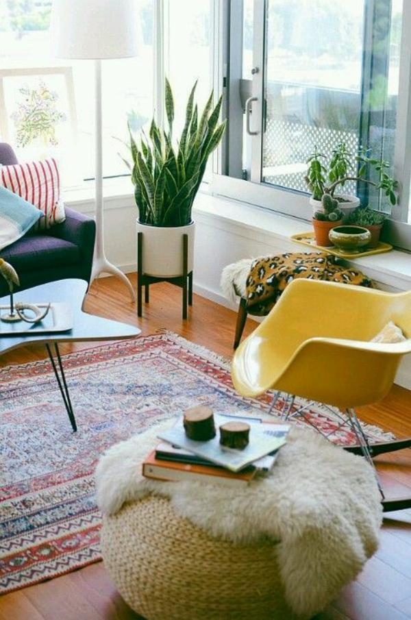 pflegeleichte zimmerpflanzen zimmergrünpflanzen bogenhanf wohnzimmer