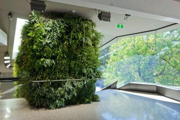 vertikaler garten zimmerpflanzen bilder zimmergrünpflanzen