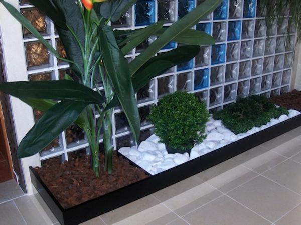 zimmerpflanzen bilder topfpflanzen zimmergrünpflanzen wohnzimmer
