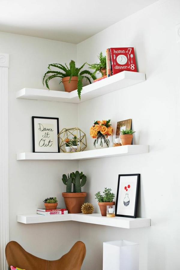 zimmerpflanzen topfpflanzen zimmergrünpflanzen wandregale dekorieren