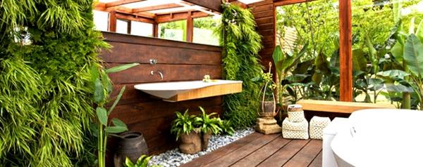 zimmergrünpflanzen zimmerpflanzen bilder balkonpflanzen