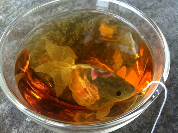 Teeeier wasser goldfisch teebeutel färben ideen
