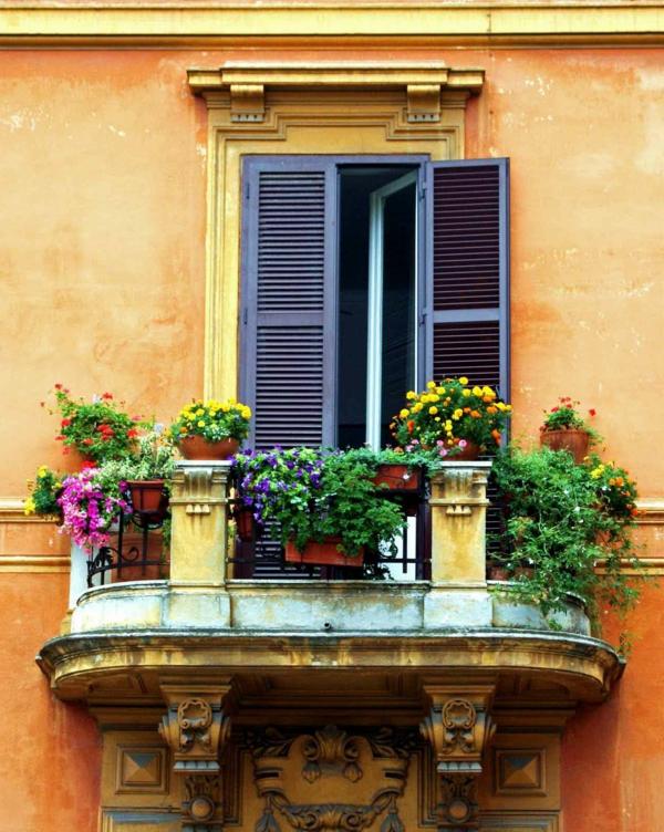 balkon pflanzen balkonpflanzen altes gebäude