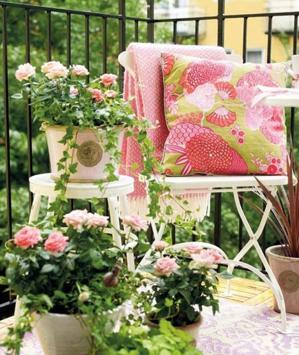 balkon bepflanzen balkonpflanzen rosen