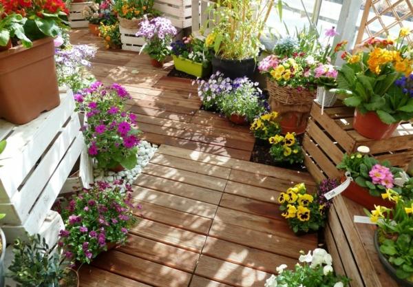 balkon bepflanzen balkonpflanzen stiefmütterchen primeln