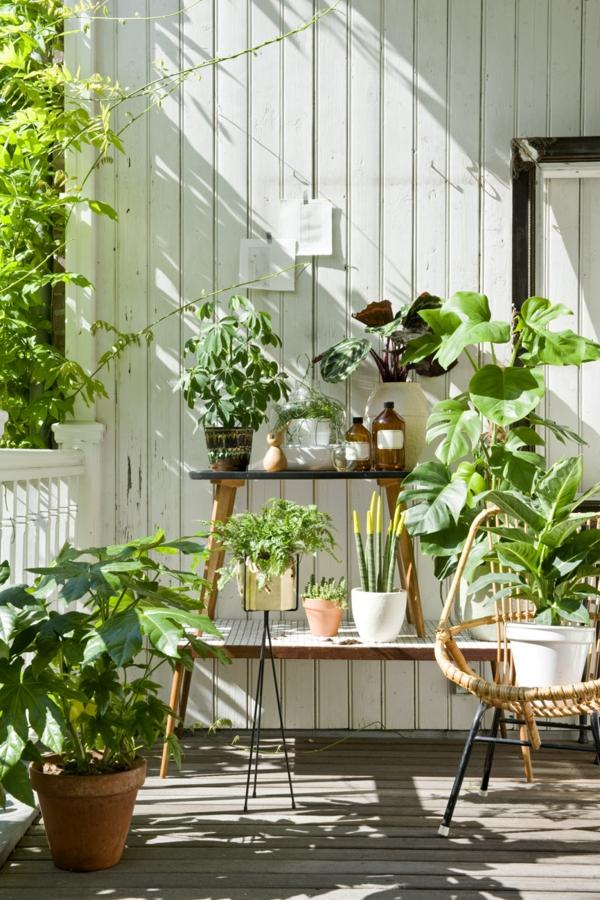 balkon bepflanzen grüne pflanzen