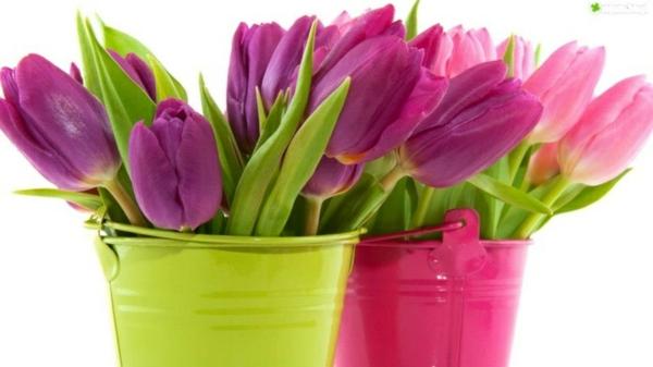 blumenarrangieren tischdeko ideen mit tulpen eimer