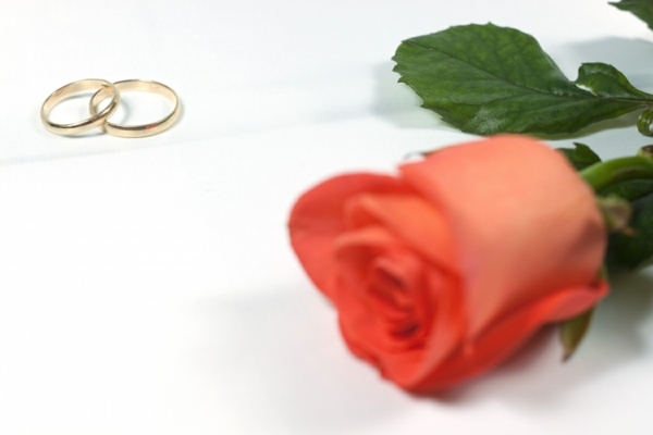 Einladungskarten Für Hochzeit, Geburtstag  Einladungskarten Mit Blumen,  Einladungs