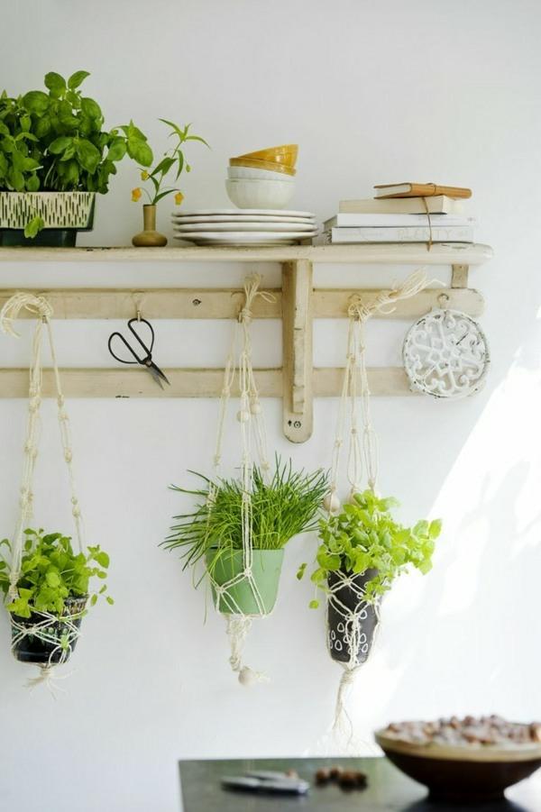 hängende zimmerpflanzen deko ideen gewürzen holzregal