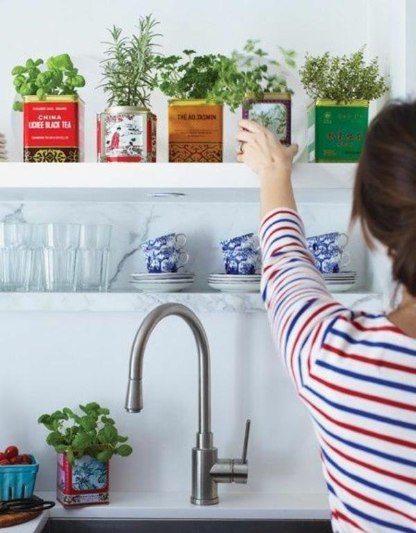 kräutergarten gestalten küchenwand zimmerpflanzen topfpflanzen