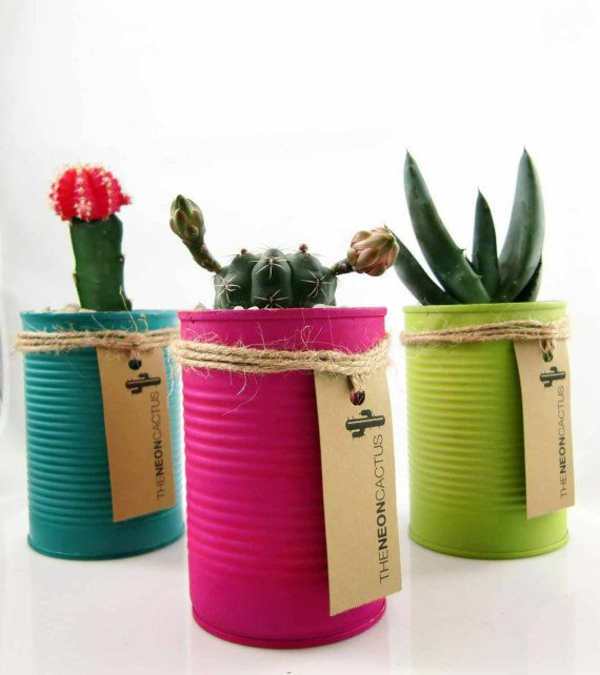 kreative bastelideen do it yourself ideen farbdosen sukkulenten