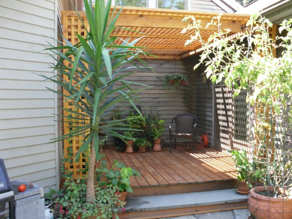pergola dach terrassenüberdachung yucca palme