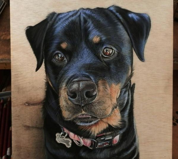 realistische Zeichnungen auf Holz hund arten