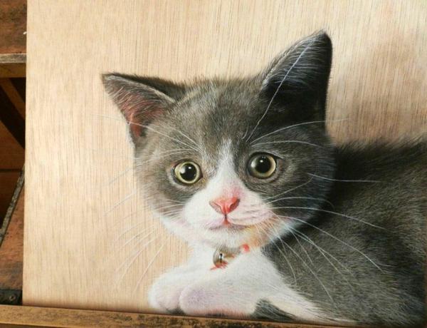 realistische toll Zeichnungen auf Holz katze