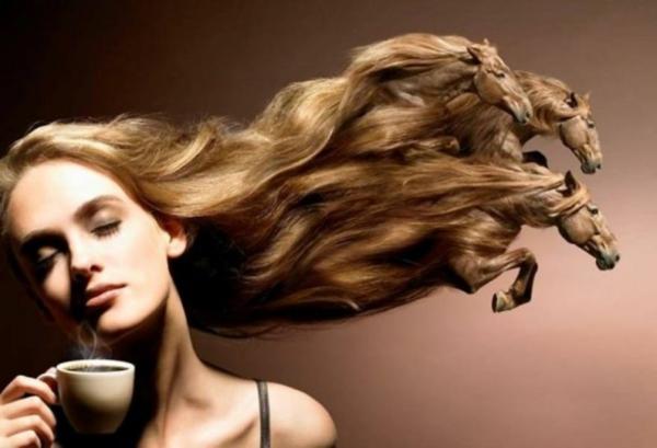 pferde haarschnitt frisur lange haare