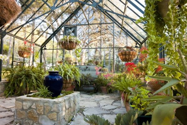 wintergarten selber bauen hängende pflanzen