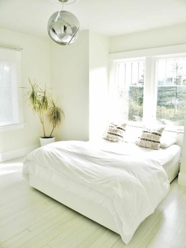 zimmerpflanzen drachenbaum feng shui schlafzimmer einrichten helles schlafzimmer