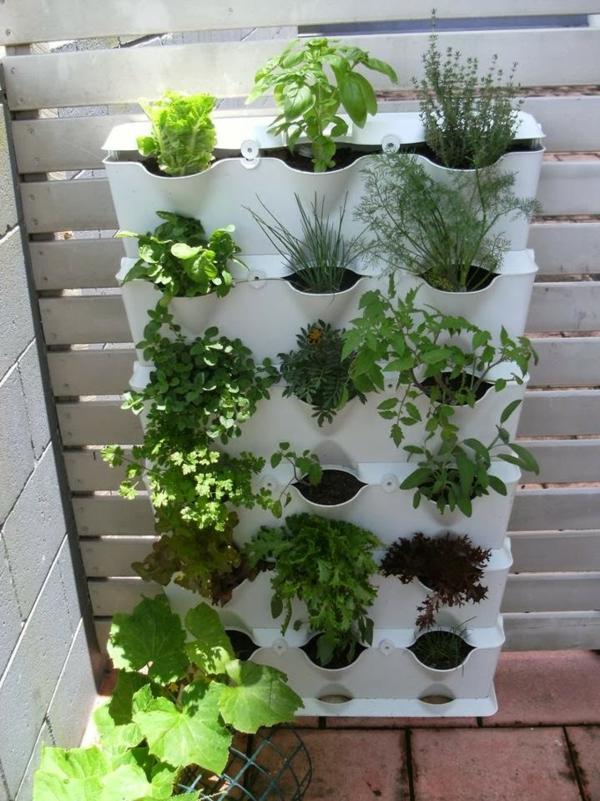 balkonpflanzen pflegeleicht. Black Bedroom Furniture Sets. Home Design Ideas