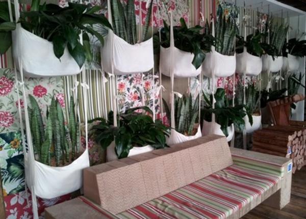 zimmerpflanzen pflegeleicht topfpflanzen hängende pflanzen
