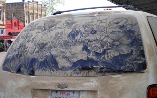 Kunst aus Staub schmutzige autoscheiben blumen