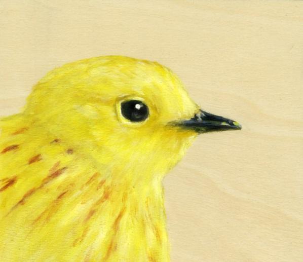 Originelle Geschenkideen für Freundin geschenk beste freundin gelb vogel
