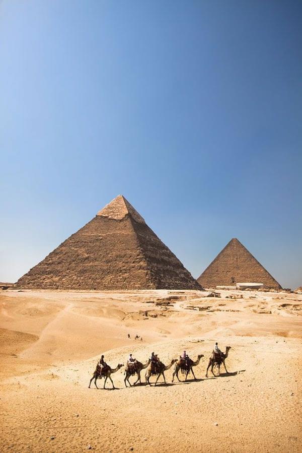 Reise nach Ägypten urlaub kamele