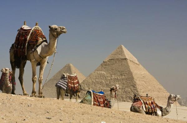 Reise Ägypten urlaub mahlzeit