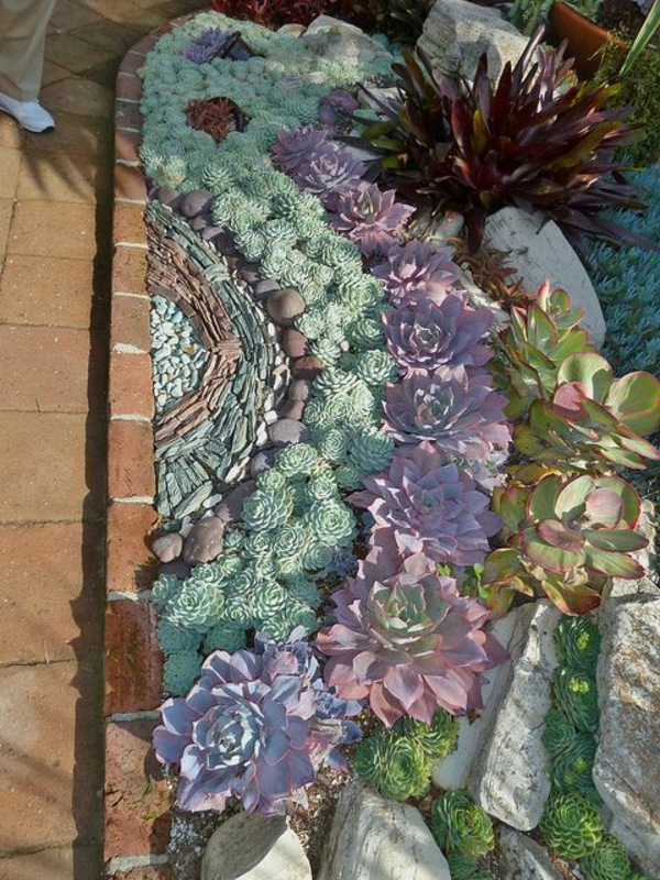garten planen kostenlos gartengestalter blumen beet sukkulenten