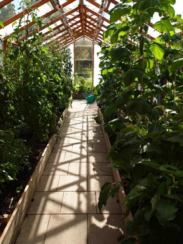 gemüse wintergarten gestalten obst und gemüse einpflanzen