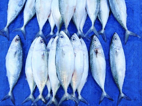 gesunder lebensstil gesund bleiben fisch