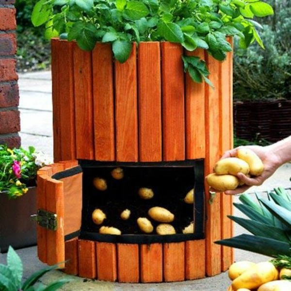 die kartoffelpflanze einfache und schnelle kartoffel rezepte. Black Bedroom Furniture Sets. Home Design Ideas