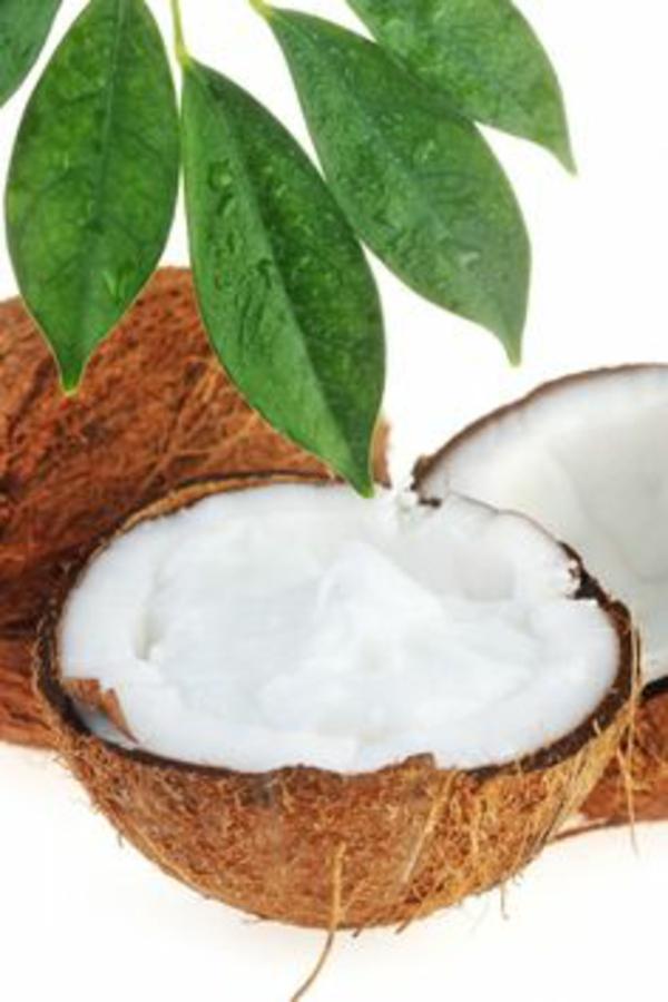 kontrollierte naturkosmetik selber machen kokos