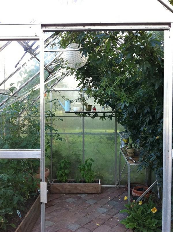 licht und wärme für die wintergarten pflanzen