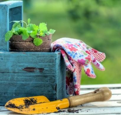 Что означает сажать растения во сне 61