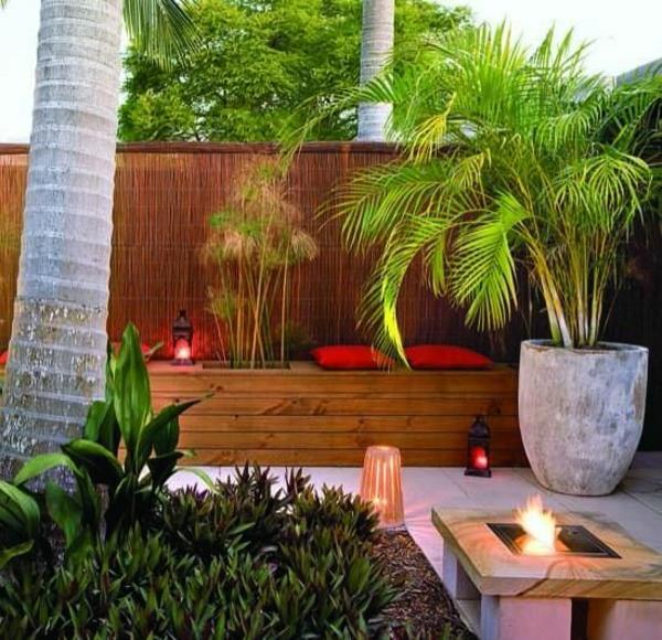 palmenarten goldfruchtpalme palme pflege terrassengestaltung