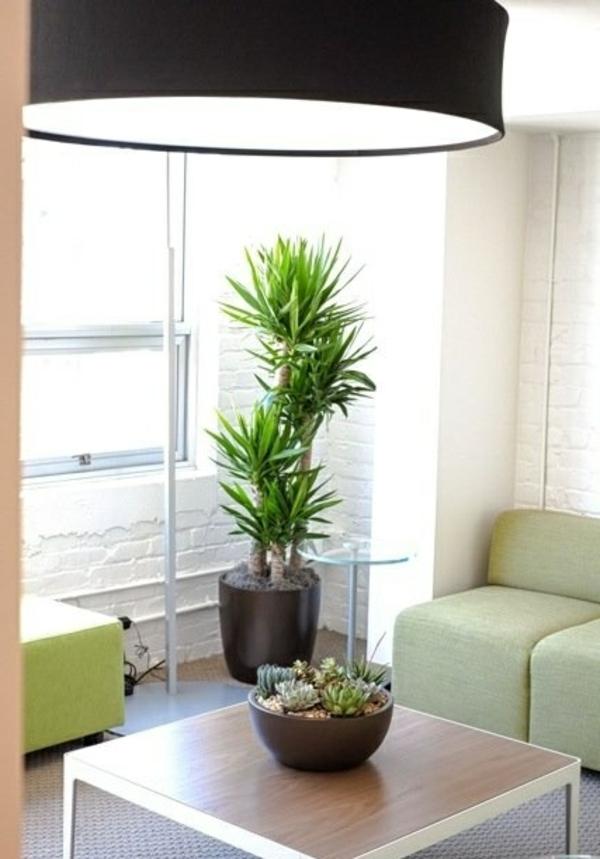 wohnzimmer yucca