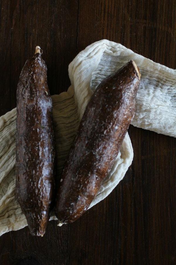 yucca wurzeln
