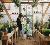Wintergarten gestalten und pflegen – kann das Ihr neues Hobby sein?