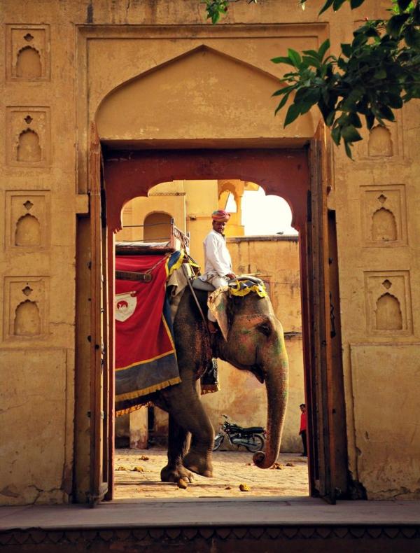 reise nach indien indienreise indische kultur sehenswürdigkeit