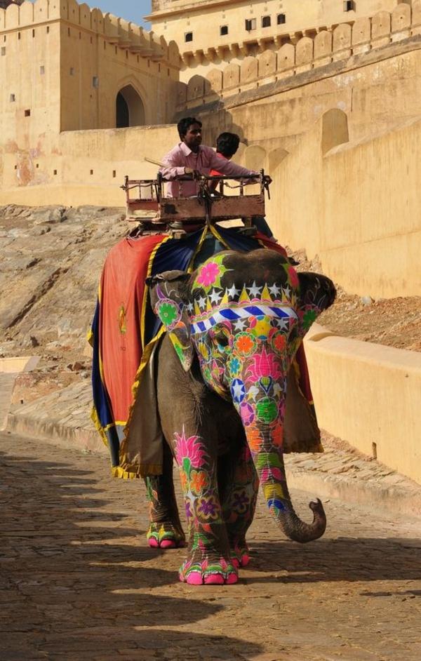 reisen nach indien indische kultur elefant