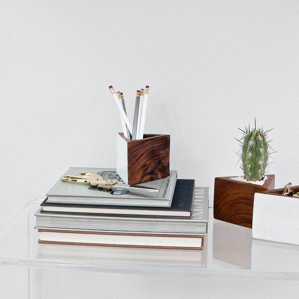 schöne zimmerpflanzen bilder kaktus auf dem arbeitstisch