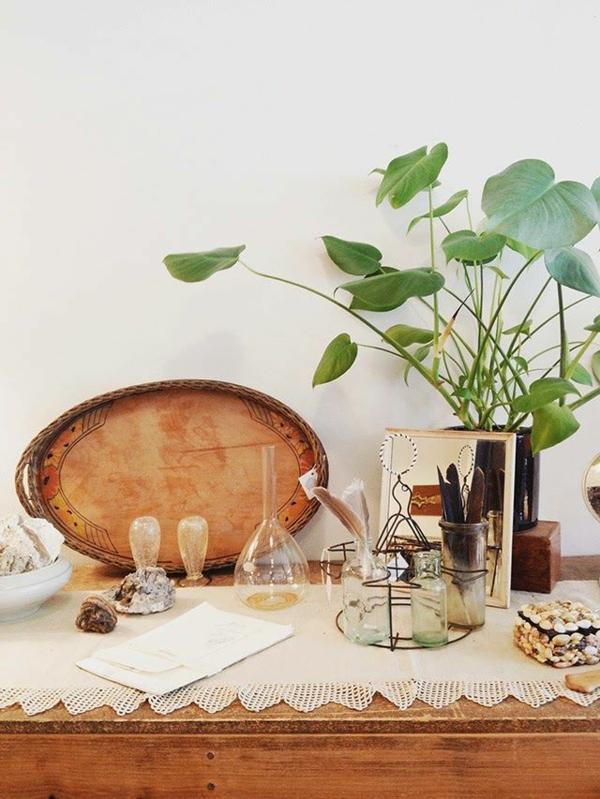 bildergalerie  schöne zimmerpflanzen vintage möbel echtholz