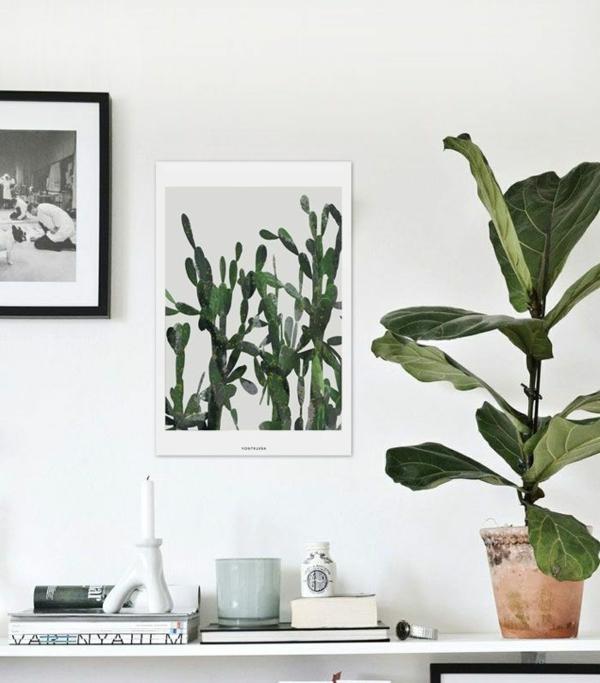 bildergalerie  schöne zimmerpflanzen wandeko ideen