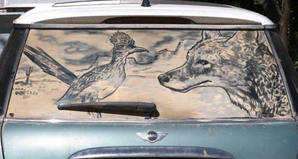 schmutzige autos kunst staub gemälde hahn wolf