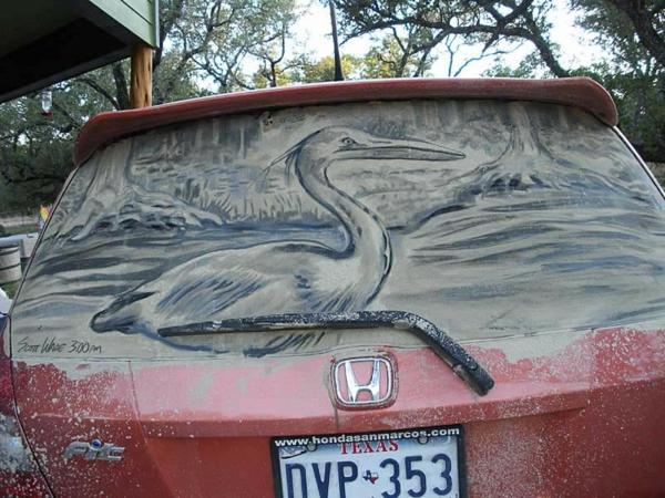 schmutzige autos kunst staub gemälde vogel