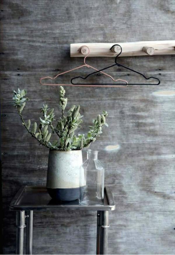 topfpflanzen pflegeleicht zimmerpflanzen wandeko ideen