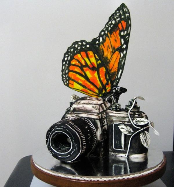 torte dekoration fotokamera schmetterling