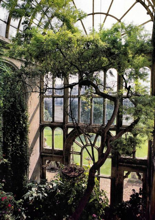 wintergarten bauen altes gartenhaus bepflanzen